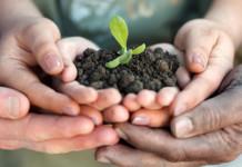 abilinrete-lavoro-disabili-monza-brianza-bando-coltiviamo agrigoltura sociale